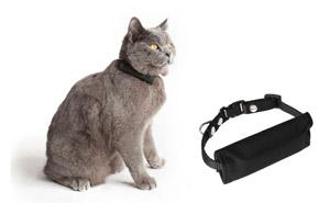 Ortungshalsband für Katzen